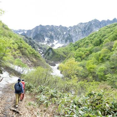 新緑と雪、どちらも欲張りに。四季をまるごといただく谷川岳一ノ倉沢エコハイキング